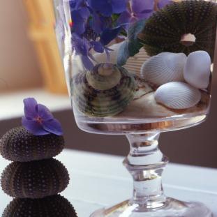 Un arreglo perfecto para ponerle ese toque de temporada a su casa. Para hacerlo, solo hace falta un copón lleno de agua, unas cuantas conchas por dentro y flores tropicales para darle vida y color a esta idea.